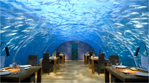 Ithaa Restaurant View