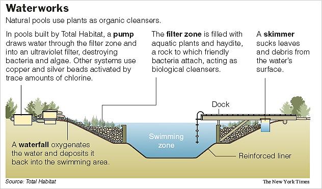 Natural Organic Pools