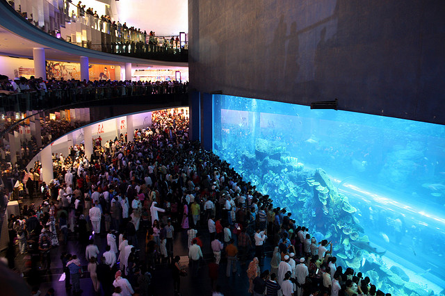 Dubai Mall's Record-Breaking Acrylic Panel