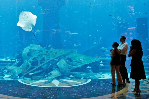 View of the Aquarium at the Atlantis Hotel