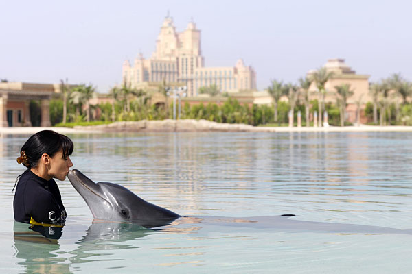 Dolphin Encounters at the Dubai Water Park