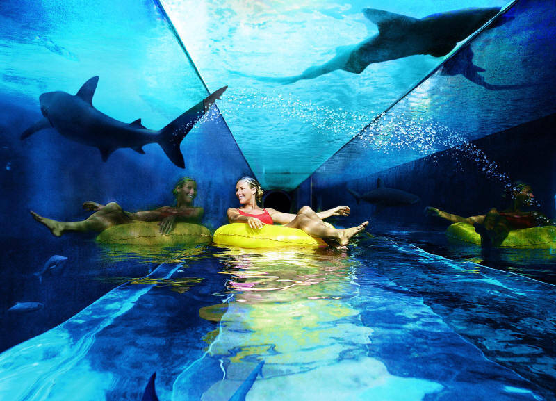Swimming with Sharks in the Atlantis Hotel Tubing River