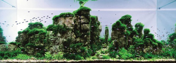 Karst Aquascape Aquarium from China