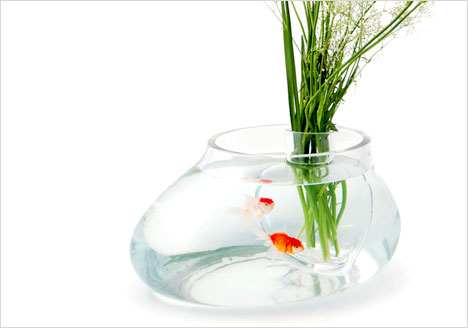 5 Bizarre Fish Tanks Small Enough For Your Office Desk Fpsbutest
