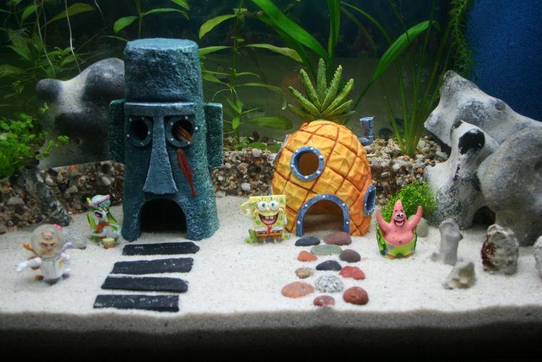 Spongebob Squarepants Aquarium