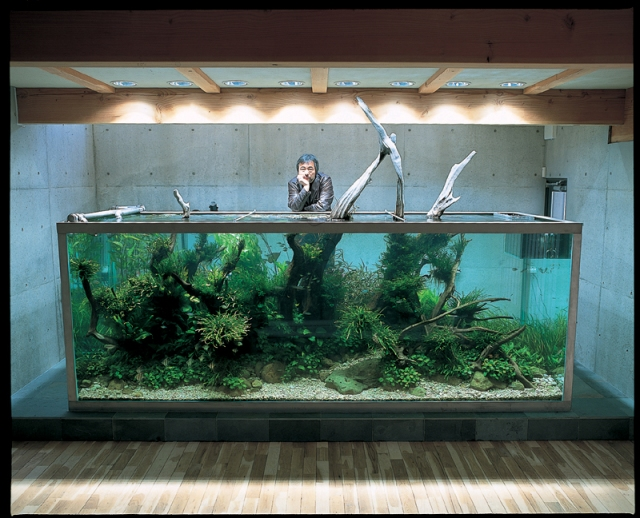 Takashi Amano's Private Tank