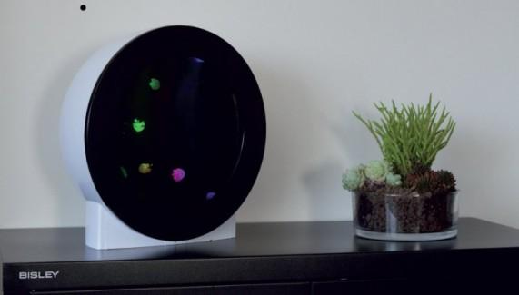 Econlux Jellyflap Tank