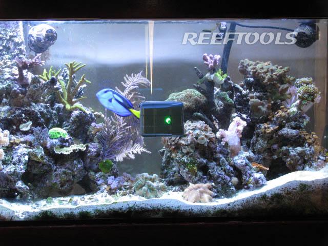 The RoboSnail Sticks to Aquarium Surfaces