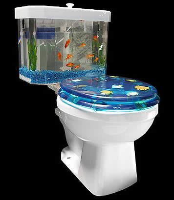 Fish Toilet Bowl