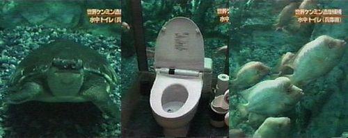 Underwater Toilet in Japan