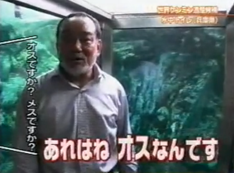 The Aquatic Toilet and the Owner