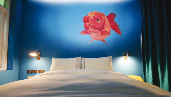 Fish in the Bedroom