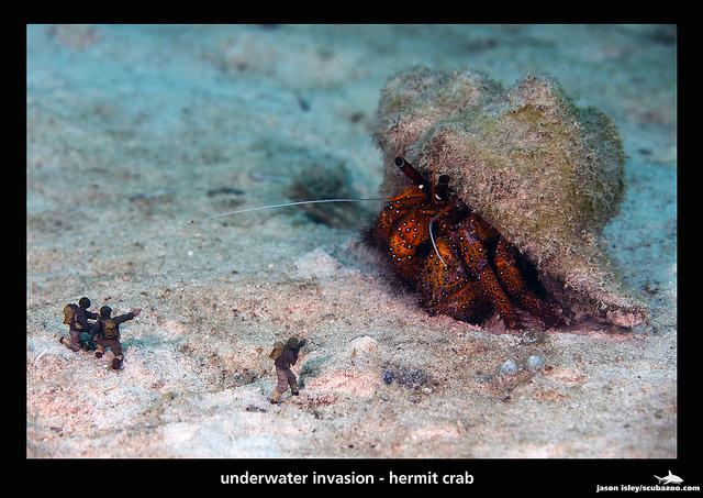 Underwater Invasion by David Isley