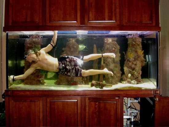 Cleaning a Home Aquarium