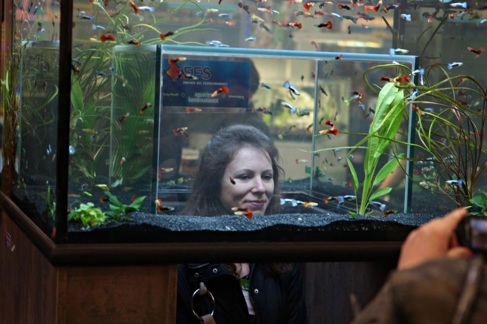 Aquarium with Unique Shape for Viewers