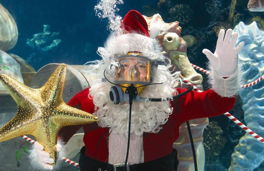 Scuba Diving Santa Claus