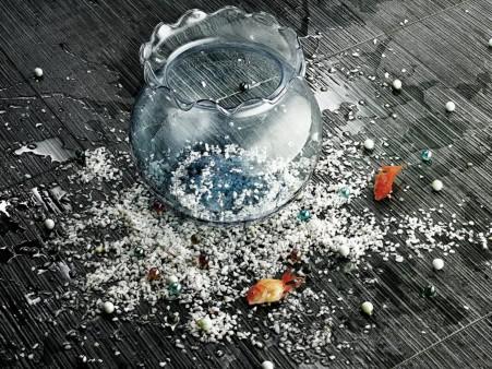 Broken Aquarium