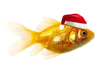 Christmas Goldfish