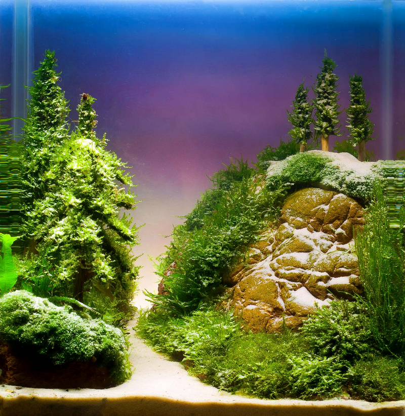Christmas Aquascape with Aquatic Christmas Tree