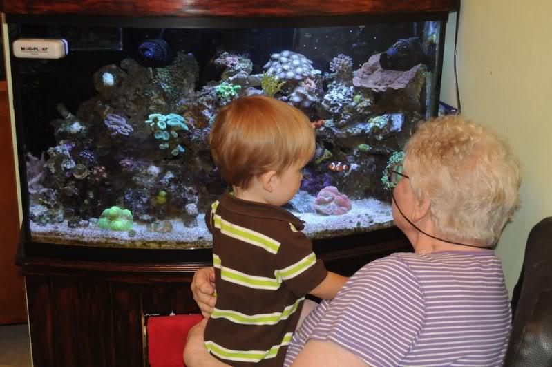 Elderly Person with Aquarium