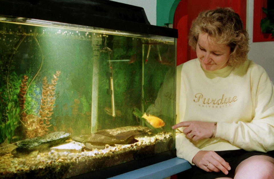 Nancy Edwards Purdue Alzheimer's Study