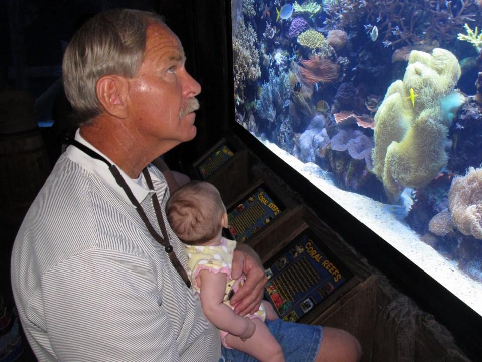 Elderly Man Viewing Aquarium