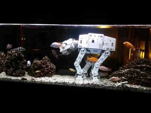 Aquarium with Star Wars AT-AT
