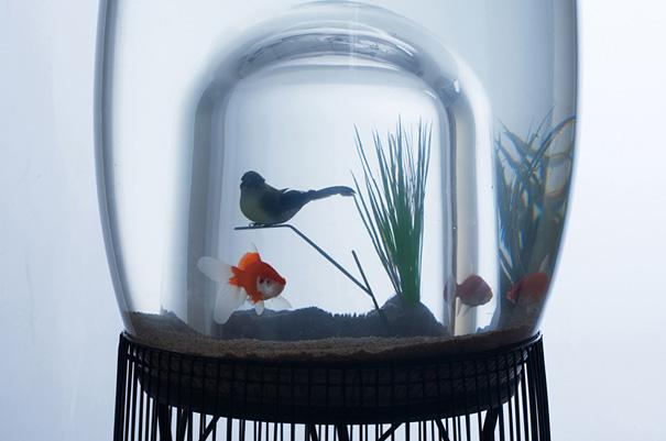 Custom Aquarium Bird Cage/Aquarium Duplex