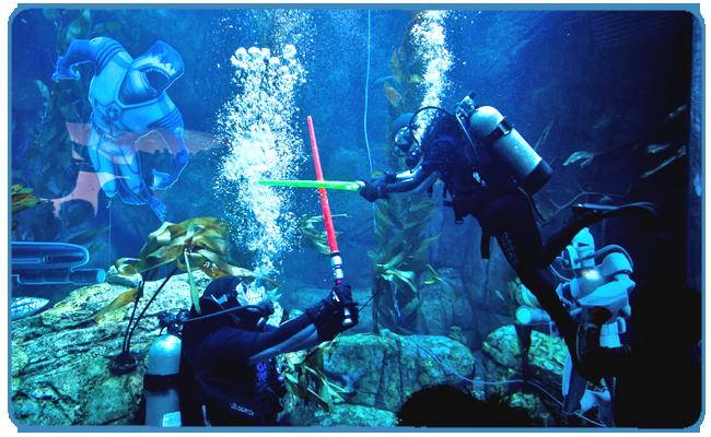 Aquarium Light Saber Battle