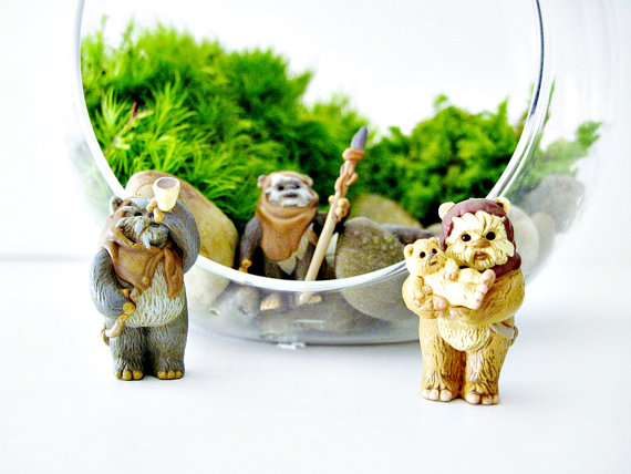 Terrarium with Ewoks