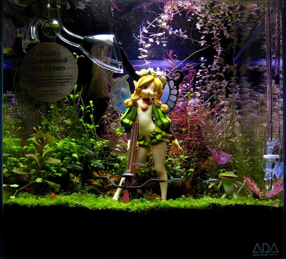 Aquascape with Magical Fairy
