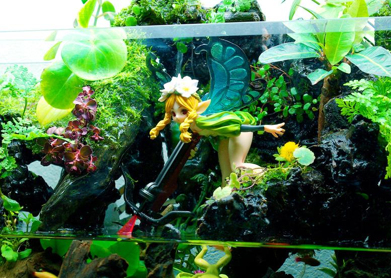 Fairy Fantasy Aquarium