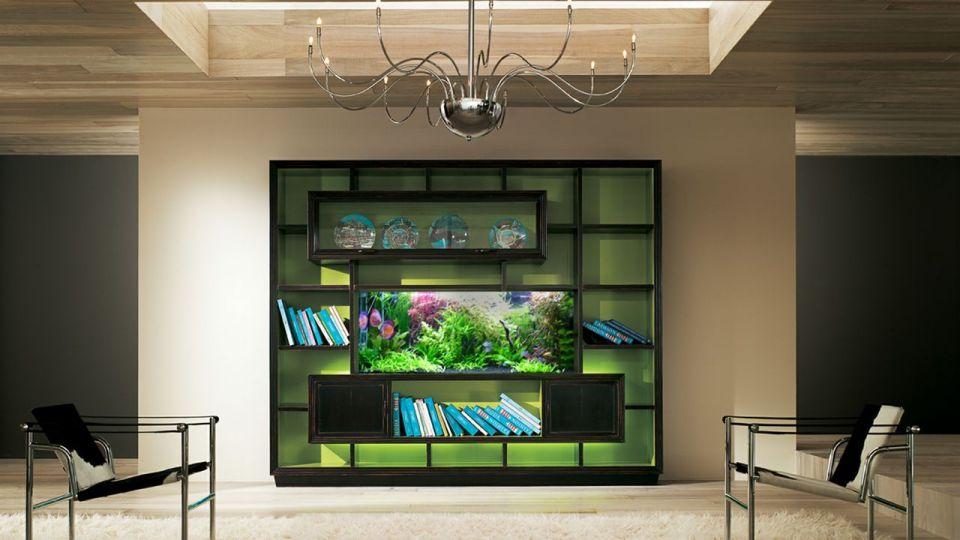 Bookshelf Custom Aquarium