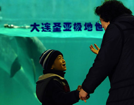 Autistic Child at Dolphin Aquarium