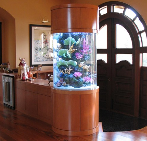 Cylindrical Aquarium for 360 Degree Viewing