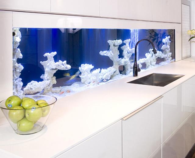 Minimalist Aquarium