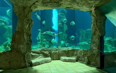 Aquarium with Stony Exterior