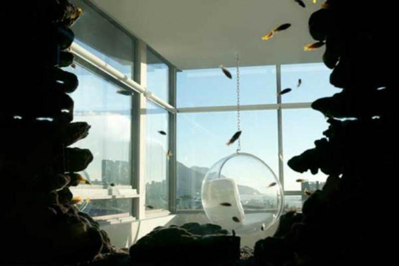 Aquarium Silhouetted Against a Window