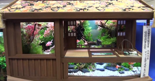 Japanese-Inspired Aquarium