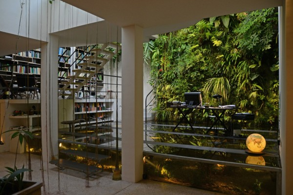 Vertical Garden and Aquarium Office