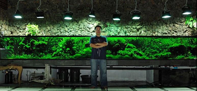 When it Comes to Aquariums, How Big is Too Big? | fpsbutest