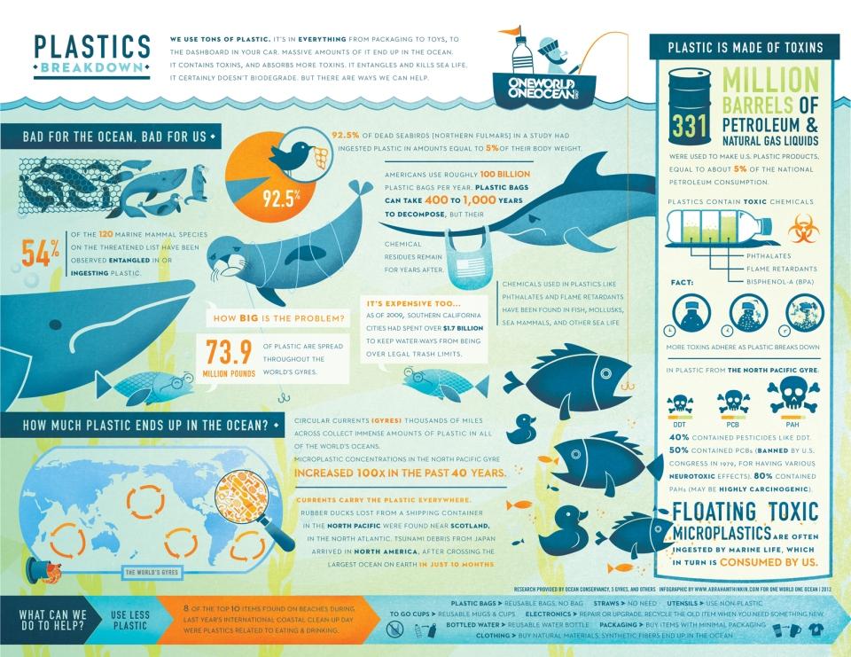 Ocean Plastic Infographic