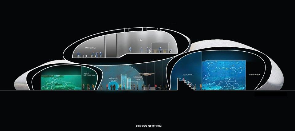 Batumi Aquarium Cross Section