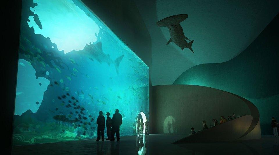 Batumi Aquarium Interior